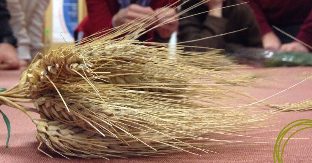 Corso trasformazione cerealicola e risicola - Its agroalimentare per il piemonte