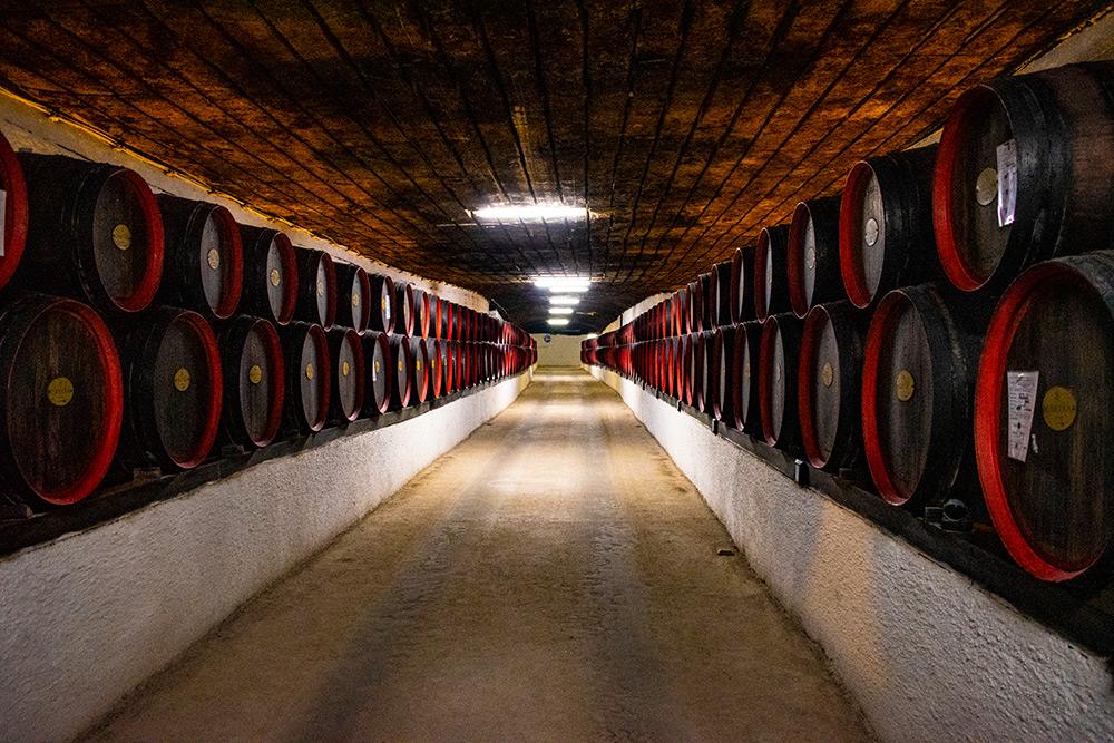 Cantina vino e botti - Consigli per bere nelle Langhe in Piemonte - Gastrowriters Antonio Astuto - Its Agroalimentare per il Piemonte
